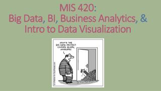 MIS 420 : Big Data , BI , Business Analytics , & Intro to Data  Visualization