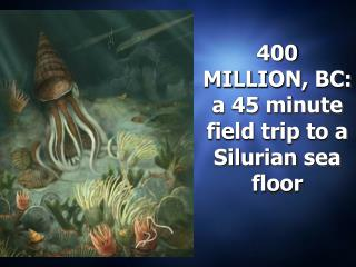 400 MILLION, BC:  a 45 minute field trip to a Silurian sea floor