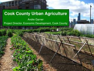 Cook County Urban Agriculture