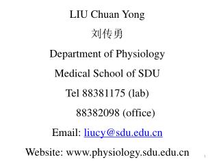 LIU Chuan Yong  刘传勇 Department of Physiology Medical School of SDU Tel 88381175 (lab)