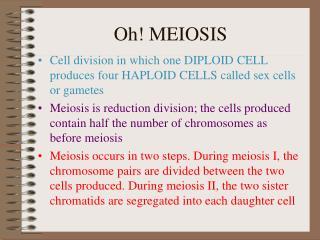 Oh! MEIOSIS