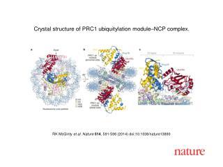 RK McGinty  et al. Nature  514 , 591-596 (2014) doi:10.1038/nature13890