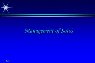 H. H. Stein Management of Sows
