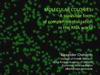 Alexander Chetverin Institute of Protein Research of the Russian Academy of Sciences