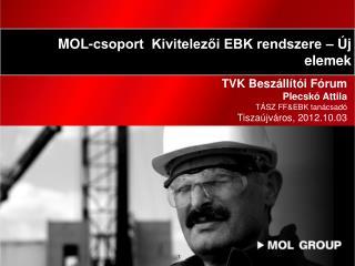 TVK Beszállítói Fórum Plecskó Attila TÁSZ FF&EBK tanácsadó Tiszaújváros,  201 2.10.03