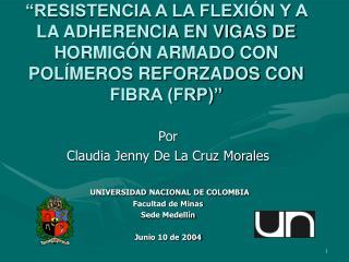 Por Claudia Jenny De La Cruz Morales UNIVERSIDAD NACIONAL DE COLOMBIA Facultad de Minas