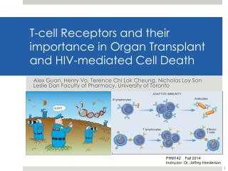 T-cell Receptors and their importance in Organ Transplant and HIV-mediated Cell Death