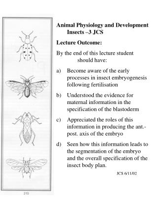 Animal Physiology and Development Insects –3 JCS Lecture Outcome: