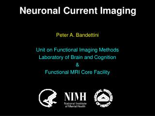 Peter A. Bandettini Unit on Functional Imaging Methods Laboratory of Brain and Cognition &
