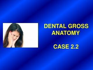 DENTAL GROSS       ANATOMY       CASE 2.2