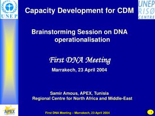 Capacity Development for CDM Brainstorming Session on DNA operationalisation First DNA Meeting