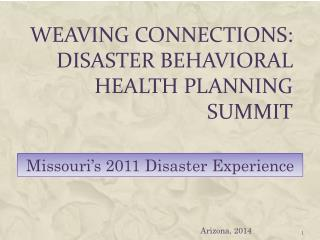 Weaving Connections: Disaster Behavioral Health Planning Summit