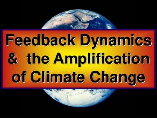 Feedback Dynamics &  the Amplification of Climate Change