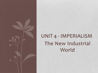 Unit 4 - Imperialism
