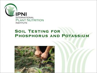 Soil Testing for Phosphorus and Potassium