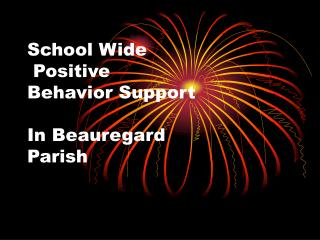 School Wide  Positive Behavior Support  In Beauregard Parish