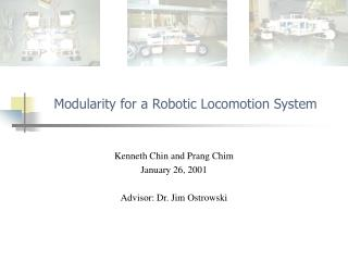 Modularity for a Robotic Locomotion System