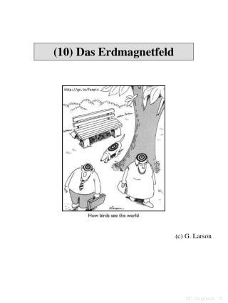(10) Das Erdmagnetfeld