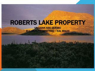 Roberts Lake PROPERTY Ungaava  Bay, QUEBEC BULLRUN  PROSPECTING – KAL MALHI