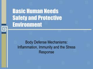 Basic Human Needs Safety and Protective Environment