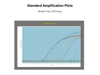 Standard Amplification Plots