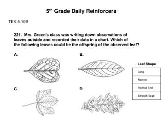5 th  Grade Daily Reinforcers TEK 5.10B