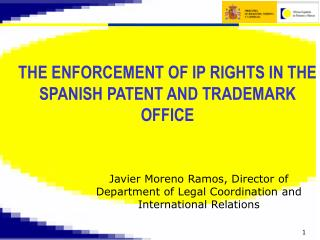 Javier Moreno Ramos, Director of Department of Legal Coordination and International Relations