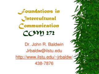 Foundations in Intercultural Communication COM 272