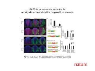 AS Yoo  et al. Nature 461 ,  296 - 296  (2009) doi:10.1038/nature08 359