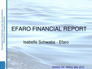 EFARO FINANCIAL REPORT