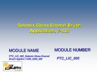 Selemix Gloss Enamel Brush Application, 7-030