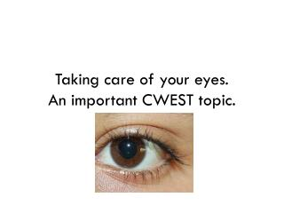 Taking care of your eyes. An important CWEST topic.