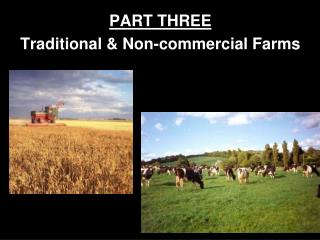 PART THREE Traditional & Non-commercial Farms