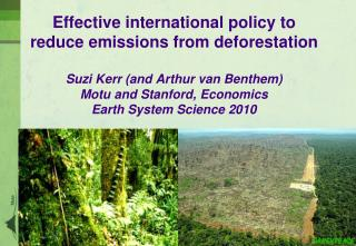 Effective international policy to reduce emissions from deforestation  Suzi Kerr and Arthur van Benthem Motu and Stanfor