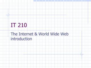 IT 210