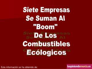 """Siete Empresas Se Suman Al  """"Boom""""  De Los  Combustibles Ecólogicos"""