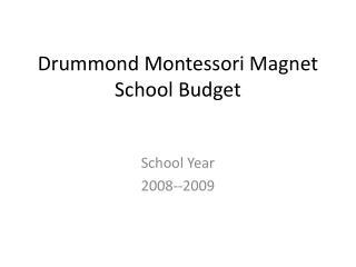 Drummond Montessori Magnet School Budget