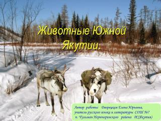 Животные Южной Якутии .