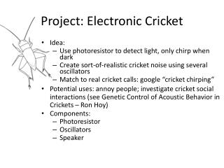 Project: Electronic Cricket