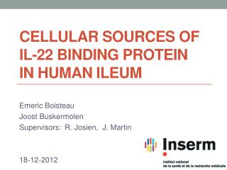 Cellular sources of iL- 22 binding  protein  in human ileum