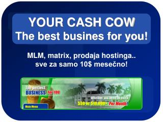 YOUR CASH COW The best busines for you!