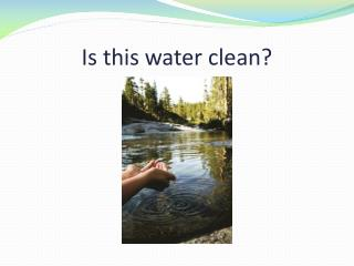 Is this water clean?