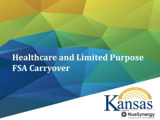 Healthcare  and Limited Purpose FSA Carryover