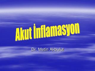 Dr. Metin Akbulut