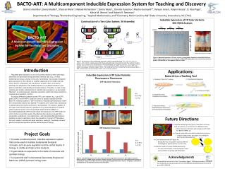 BACTO-ART A Multicomponent Inducible Expression System for Teaching and Discovery