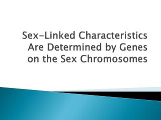 Sex-Linked Characteristics Are Determined by Genes on the Sex Chromosomes