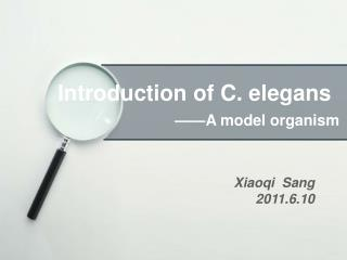 Introduction of C. elegans