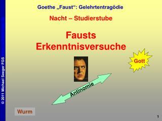 "Goethe ""Faust"": Gelehrtentragödie"