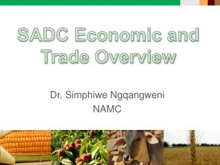 SADC Economic and Trade Overview