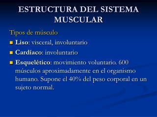 ESTRUCTURA DEL SISTEMA MUSCULAR